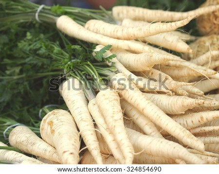 Bunch of fresh parsley root at farmers market in Prague (Czech Republic). - stock photo