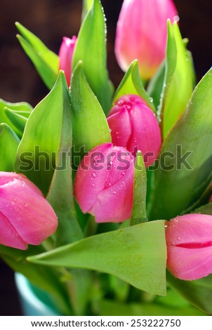 bunch of fresh pink tulips with water drops in vase on wooden background - stock photo