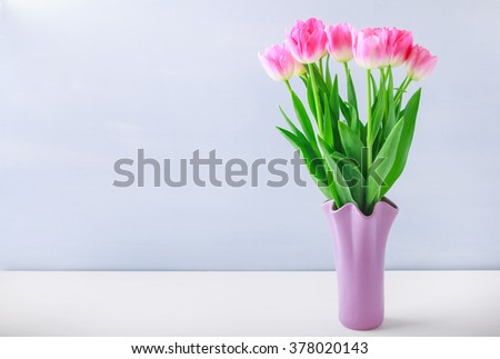 Bunch of fresh spring pink tulips on white wooden board and blue background