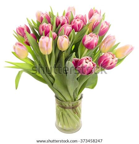 Bunch of fresh spring tulips in a vase isolated on white background