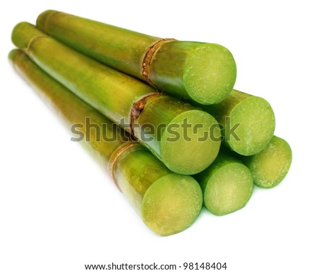 Bunch of fresh sugar cane - stock photo