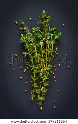 Bunch of fresh thyme with coriander seeds on a black background. - stock photo