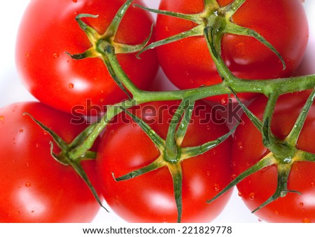 Bunch of fresh tomatoes with water drops. Top view. - stock photo