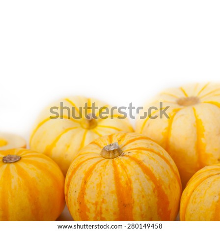bunch of fresh yellow pumpkins just collected from garden  - stock photo