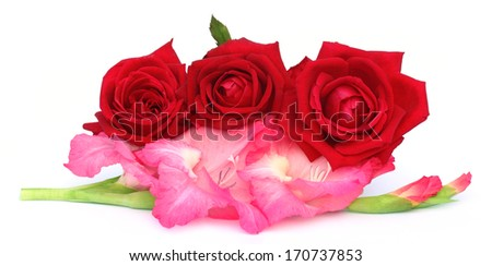 Bunch of gladiolus and red rose over white background