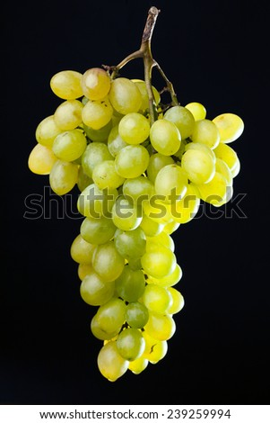 bunch of grape green with water drops on black background