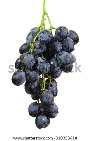 Bunch of grapes isolated on white - stock photo