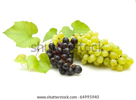Bunch of grapes on white background - stock photo
