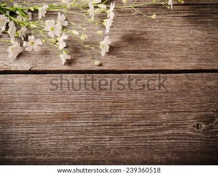 bunch of Gypsophila on old wooden table - stock photo
