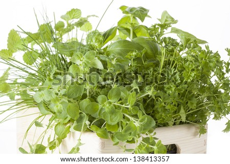 Bunch of herbs in the white box