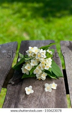 bunch of jasmine flowers on wooden garden table - stock photo