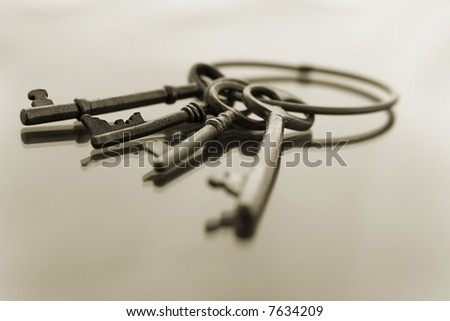 Bunch of keys on reflective surface in Sepia, with Focus in Midground - stock photo