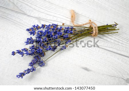 bunch of lavender - stock photo