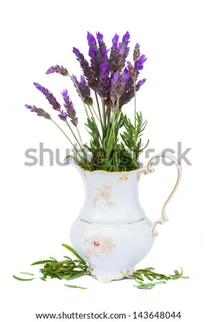Bunch of lavender flowers vase isolated on white background - stock photo