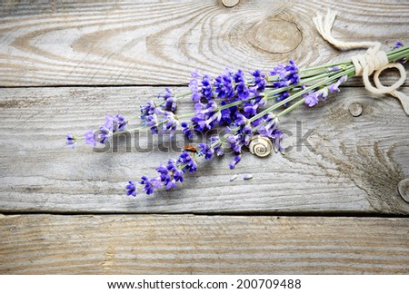Bunch of lavender flowers with snail on an old wood table - stock photo