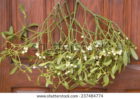 Bunch of mistletoe on the wooden door - stock photo