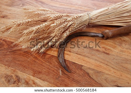 Forum on this topic: French Peasant Flat Bread, french-peasant-flat-bread/