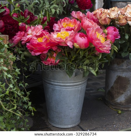 bunch of of the flower wild peony (Paeonia lactiflora). Freshly picked bouquet of peony flowers on display at the farmers market - stock photo