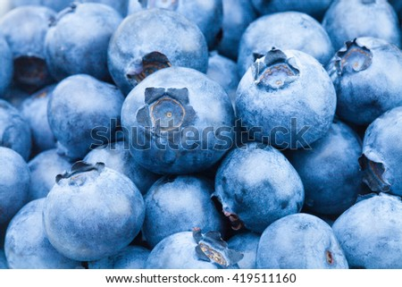 Bunch of organic blueberries - close up shot - stock photo