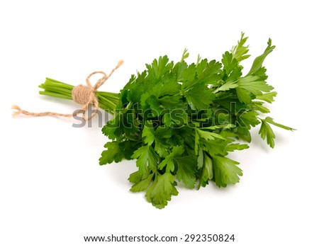 Bunch of Parsley. Isolated. - stock photo