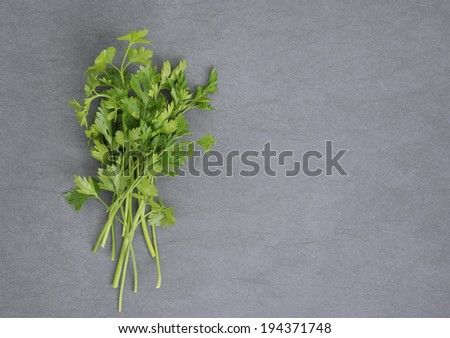 Bunch of parsley on dark and moody textured background. Above view. - stock photo