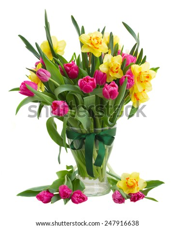 bunch  of pink tulip flowers and yellow daffodils in glass  vase isolated on white background - stock photo