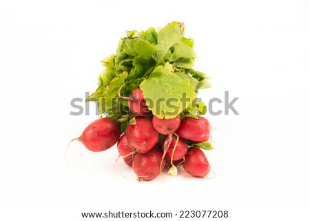 Bunch of radishes isolated on a white background with copy space for text. Organic vegetables for a healthy nutrition and lifestyle - stock photo
