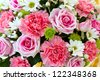 bunch of red and pink roses - stock photo