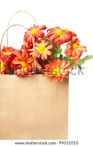Bunch of red chrysanthemums in a paper bag over white background - stock photo