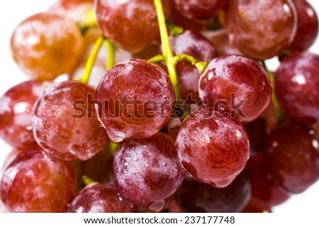 Bunch of red grapes , fresh with water drops  on white background. - stock photo