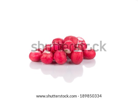 Bunch of red radish. Isolated on a white background. - stock photo