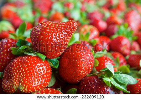 Bunch of red ripe fresh strawberries in a basket