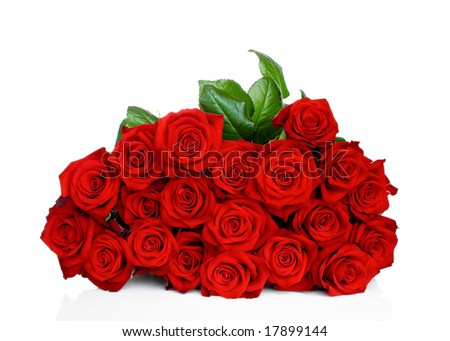 Bunch of red roses isolated on white background - stock photo