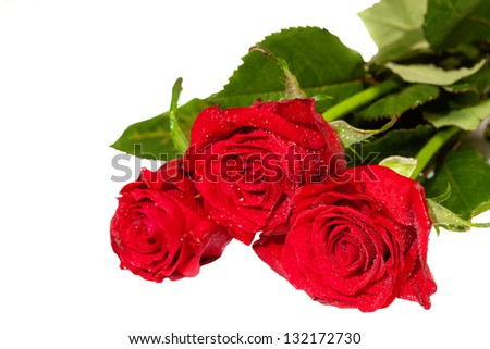 Bunch of red roses isolated on white. shallow DOF - stock photo