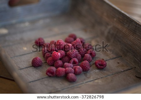 bunch of redberries in a wooden basket - stock photo