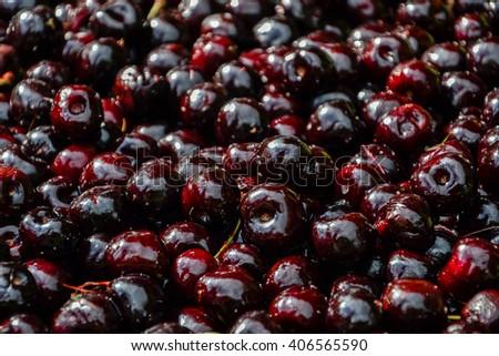 Bunch of ripe sweet fresh red cherries. Cherry backgorund - stock photo