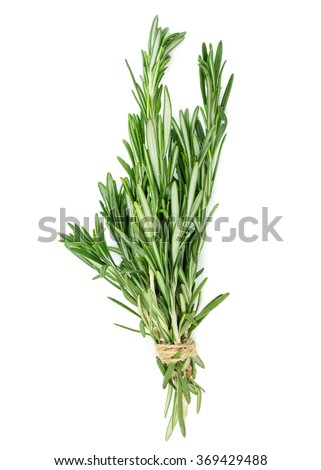 Bunch of rosemary isolated on white background - stock photo