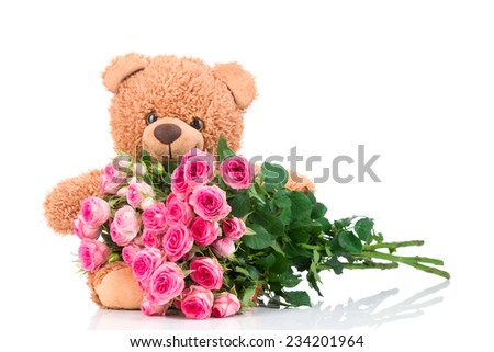 Bunch of roses and a teddy bear on white background - stock photo