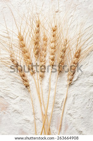 bunch of rye ears close-up - stock photo