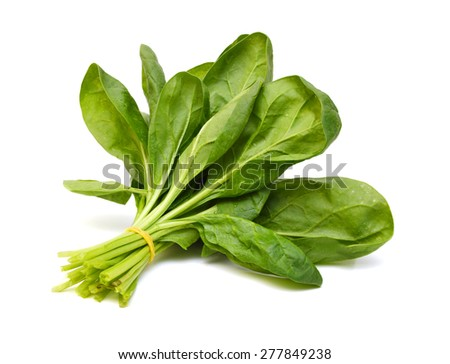 Spinach Bunch Stock Photos, Images, & Pictures | Shutterstock