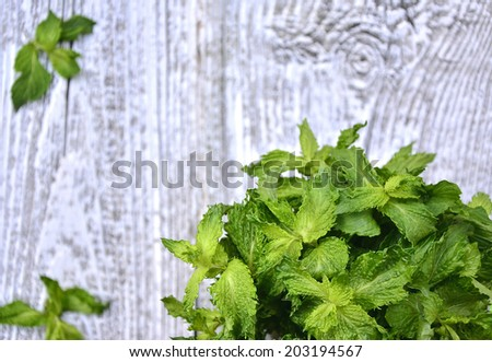 Bunch of the mint on wooden table.Selective focus.Copy space background.