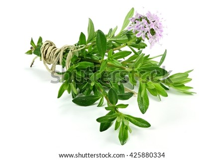 bunch of thyme isolated on white background