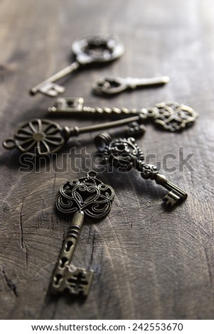 bunch of vintage keys  on old wooden plank - stock photo