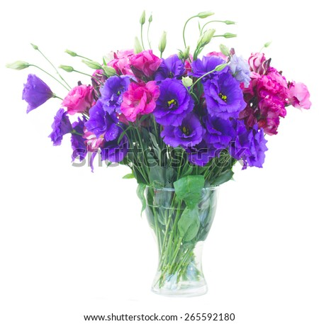 bunch of violet   amd mauve eustoma flowers in glass vase isolated on white - stock photo