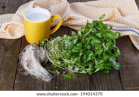 Bunch of watercress on a rustic wooden background. Selective focus - stock photo