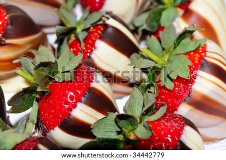 bunch of white and dark chocolate swirl covered strawberries - stock photo