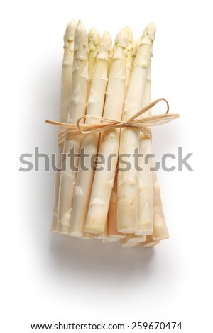 bunch of white asparagus, spargel - stock photo