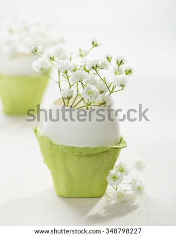 Bunch of white baby's breath flowers (gypsophila) in eggs shell on the white wooden plank. Shallow depth of field, focus on near flowers. Easter concept