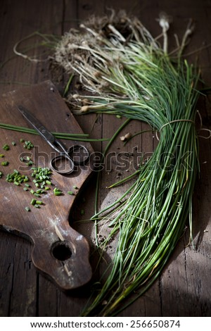 bunch of wild chives with roots on wooden table with natural sunbeam - stock photo