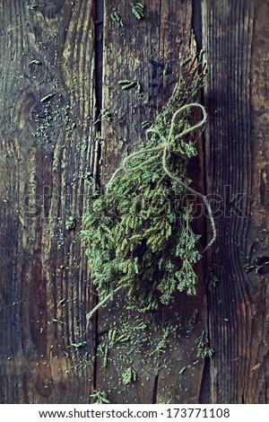 Bunch of wild oregano; dried - stock photo